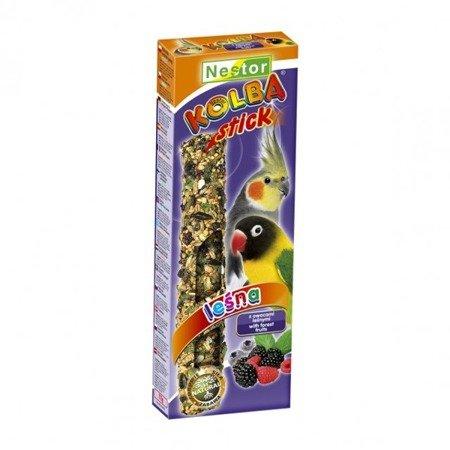 Nestor kolba z owocami leśnymi dla średnich papug 2 sztuki