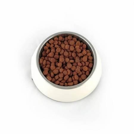 PUPIL Premium ADULT MINI bogata w jagnięcinę i ryż 10 kg