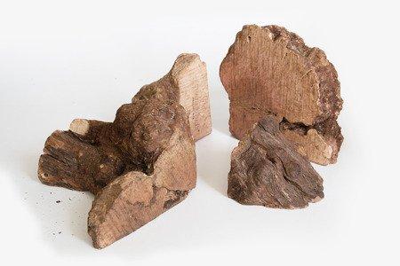 Recosnack Korzeń hiszpańskiego drzewa wrzosowego S 60 - 150 g