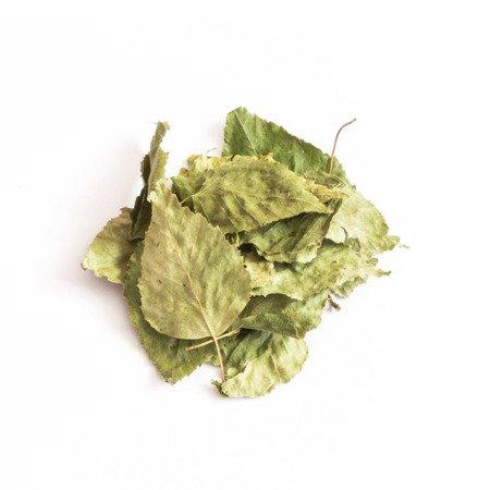 Tivo Liść brzozy 150 g