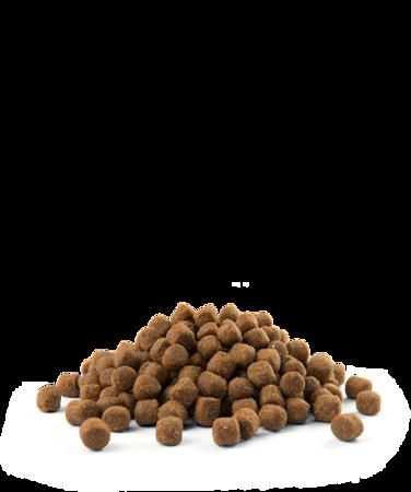 VERSELE-LAGA Opti Life Puppy Sensitive 12.5kg - karma dla szczeniąt szczególnie wrażliwych ( łosoś )