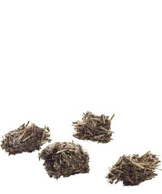 Versele Laga Nature Snack Bits Parsnip 60g - kąski wysokobłonnikowe z pasternakiem